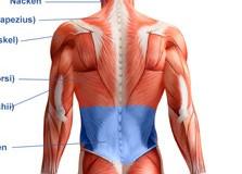 Unterer Rücken